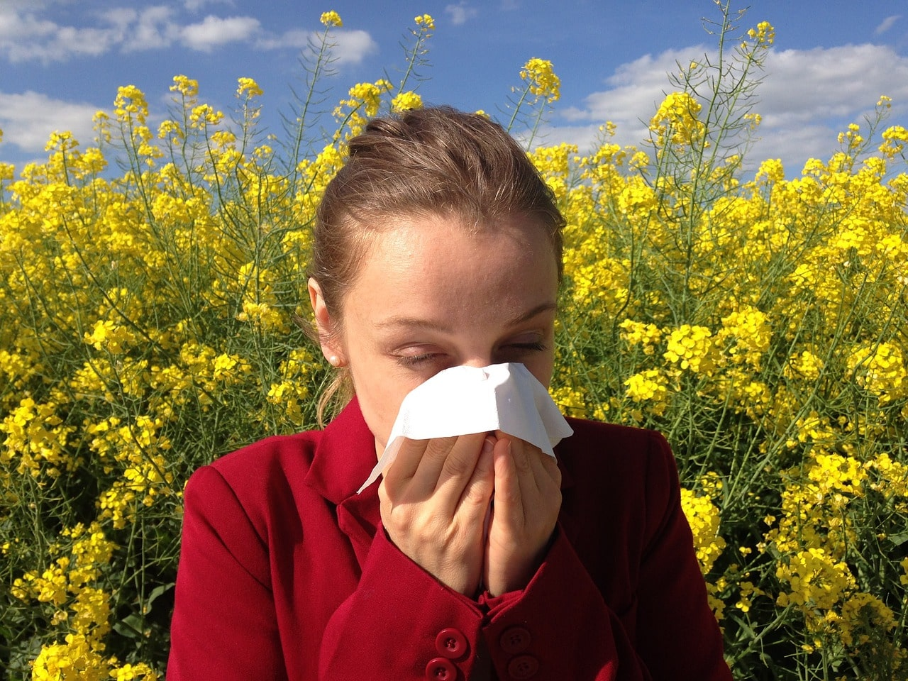 Allergie, asthme