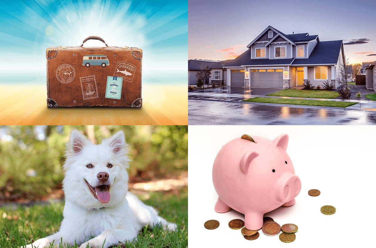 Everything you need to know about House sitting