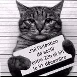 Chrisetflo42, Home sitter Saint-Vincent-de-Boisset France | 5