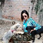 Diana, Home sitter Santiago de Surco Peru | 5