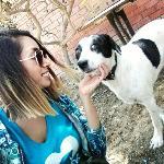Diana, Home sitter Santiago de Surco Peru | 7