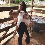 Isabella, Home sitter Uberlândia Brazil | 1