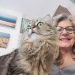 Jojo40, Home sitter Escource France | 1