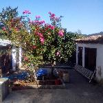 House sitting in  São Luis Portugal