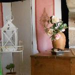 Mona, Home sitter Treignat France | 3