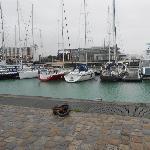 Mona, Home sitter Treignat France | 6