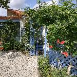 Odile, Home sitter Paizay-le-Sec France | 1