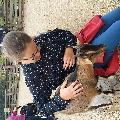 Sousa, Home sitter Champs sur Marne France   2